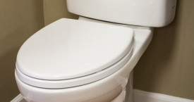 Toto Transitional Drake Toilet