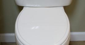 Toto Eco Datmouth Toilet