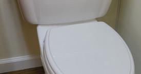 Toto Eco Whitney Toilet