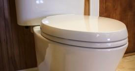 Toto Eco Nexus Toilet
