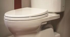 Toto Vespen II Toilet