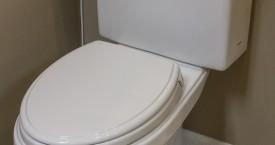 Toto Promenade Toilet