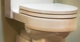 Toto Eco Lloyd Toilet